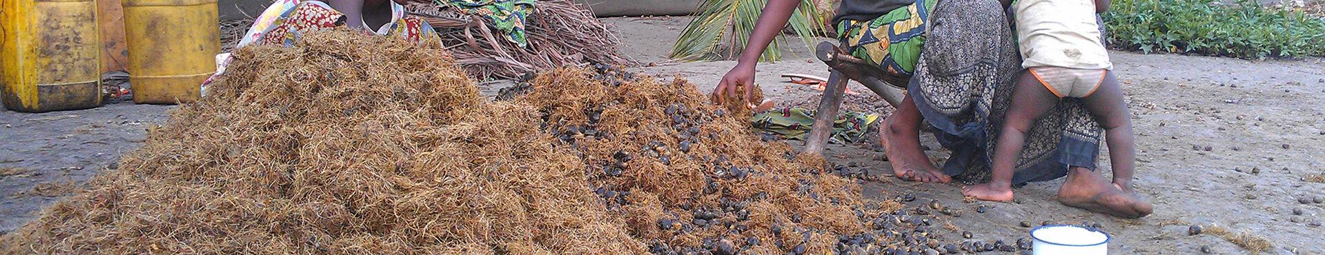 Banner - RIAO-RDC Coordination de Dakar