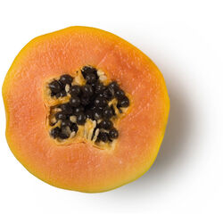 Fresh Papaya Juice