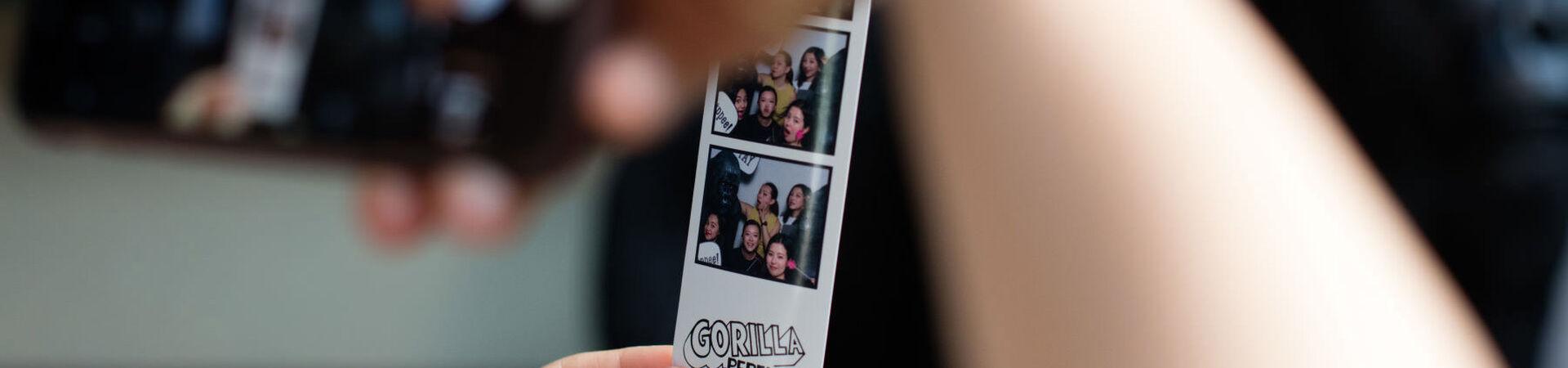 Banner - The Gorilla Perfume Tour