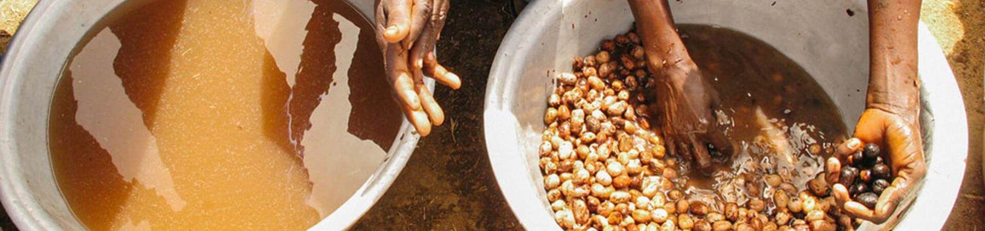 Banner - What is Fair Trade?