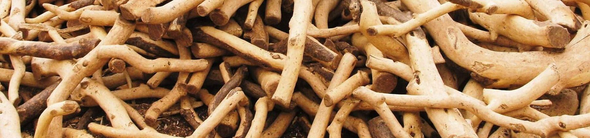 Banner - Where Does Sandalwood Come From?