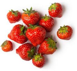 Strawberry Powder (Fragaria vesca)