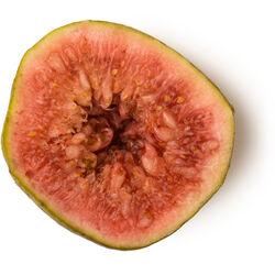 Fresh Fig Juice (Ficus Carica)