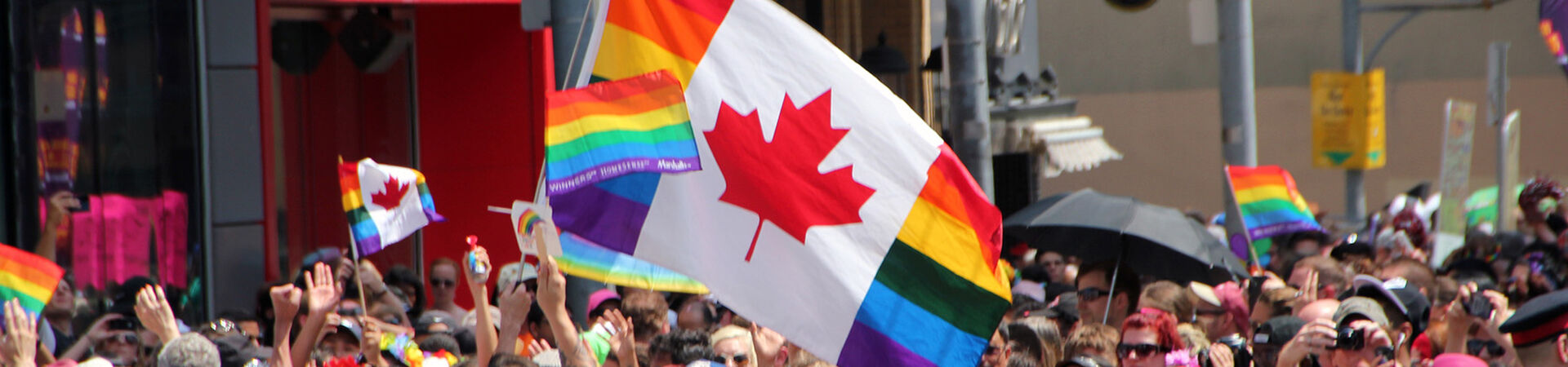 Banner - End Conversion Therapy for Minors in Canada