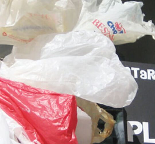 Time to trash plastic bags