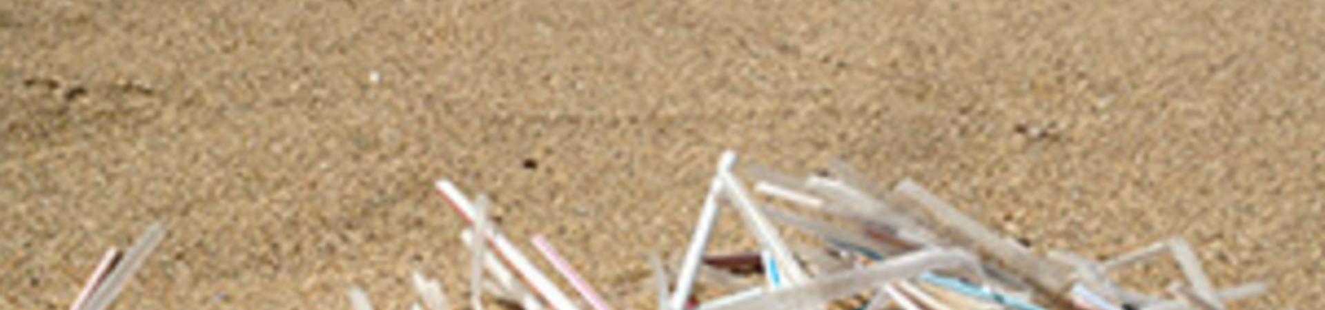 Banner - Plastic Pollution Coalition
