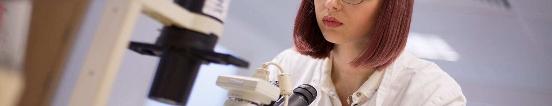 Banner - Fighting Animal Testing a Thousand Times Over