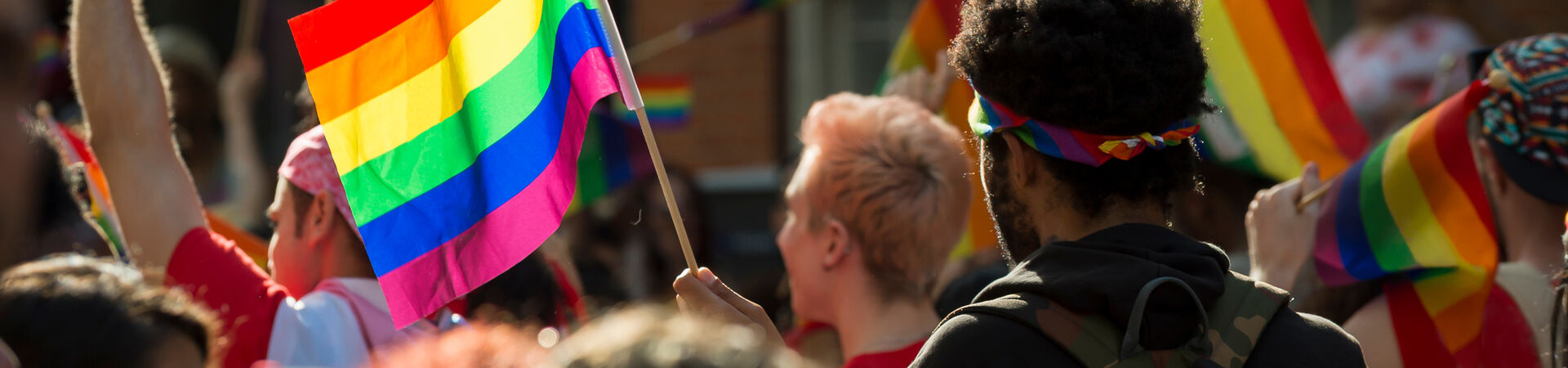 Banner - Why Pride Matters