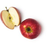 Fresh Apple Juice (Pyrus malus)