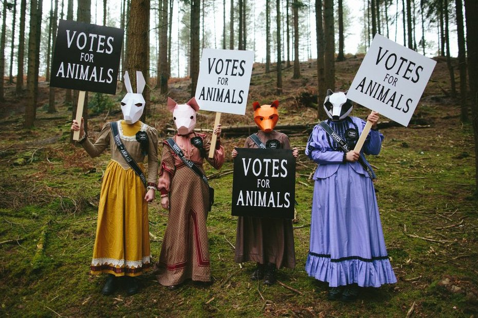 A group of four people stand in a field wearing animal masks, holding signs that read: votes for animals.