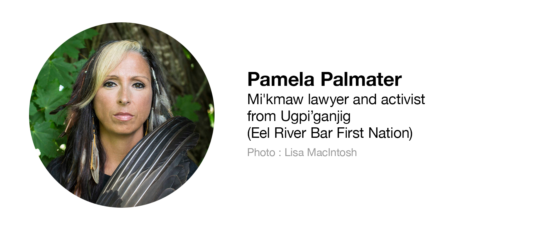 Mi'kmaw lawyer and activist from Ugpi'ganjig (Eel River Bar First Nation)
